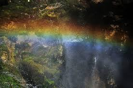 NICErainbow-touch-from-deviantart-com11 (1)