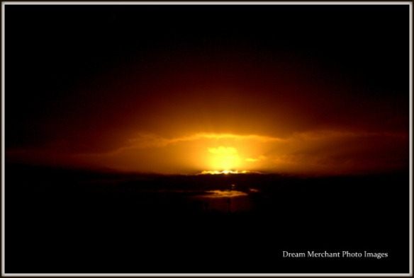 dawn-best11112