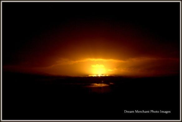 dawn-best12