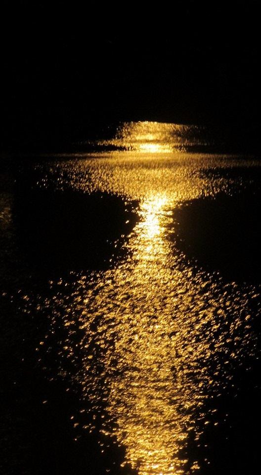 golden light2