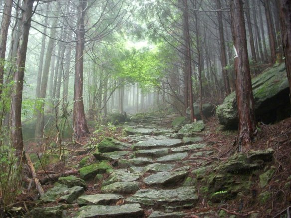 Image result for make your paths straight.