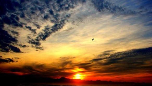 john-sunrise-best1
